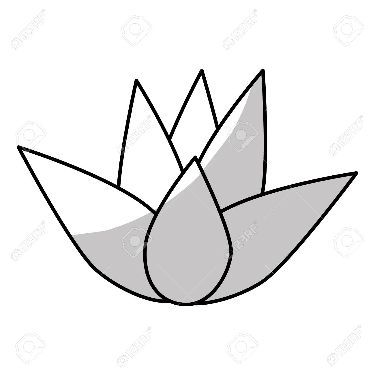 Lotus Flower Icon Over White Background Natural Spa Center Design