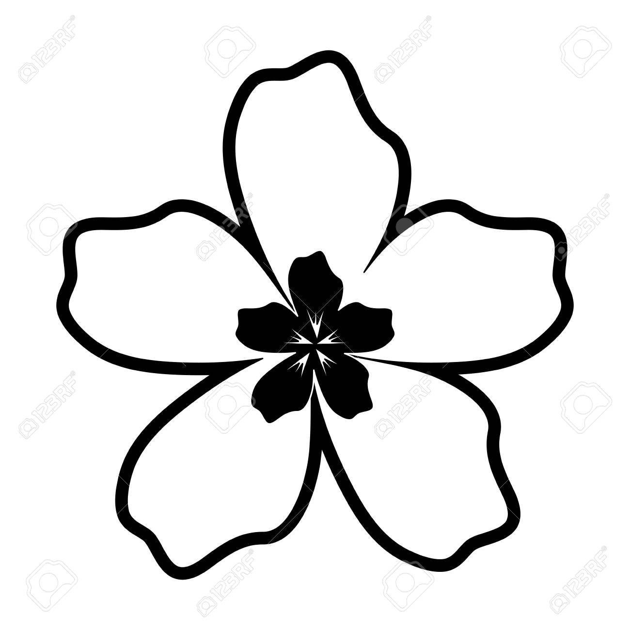 A Flat Line White Flower Of Five Petals With Black Center Vector