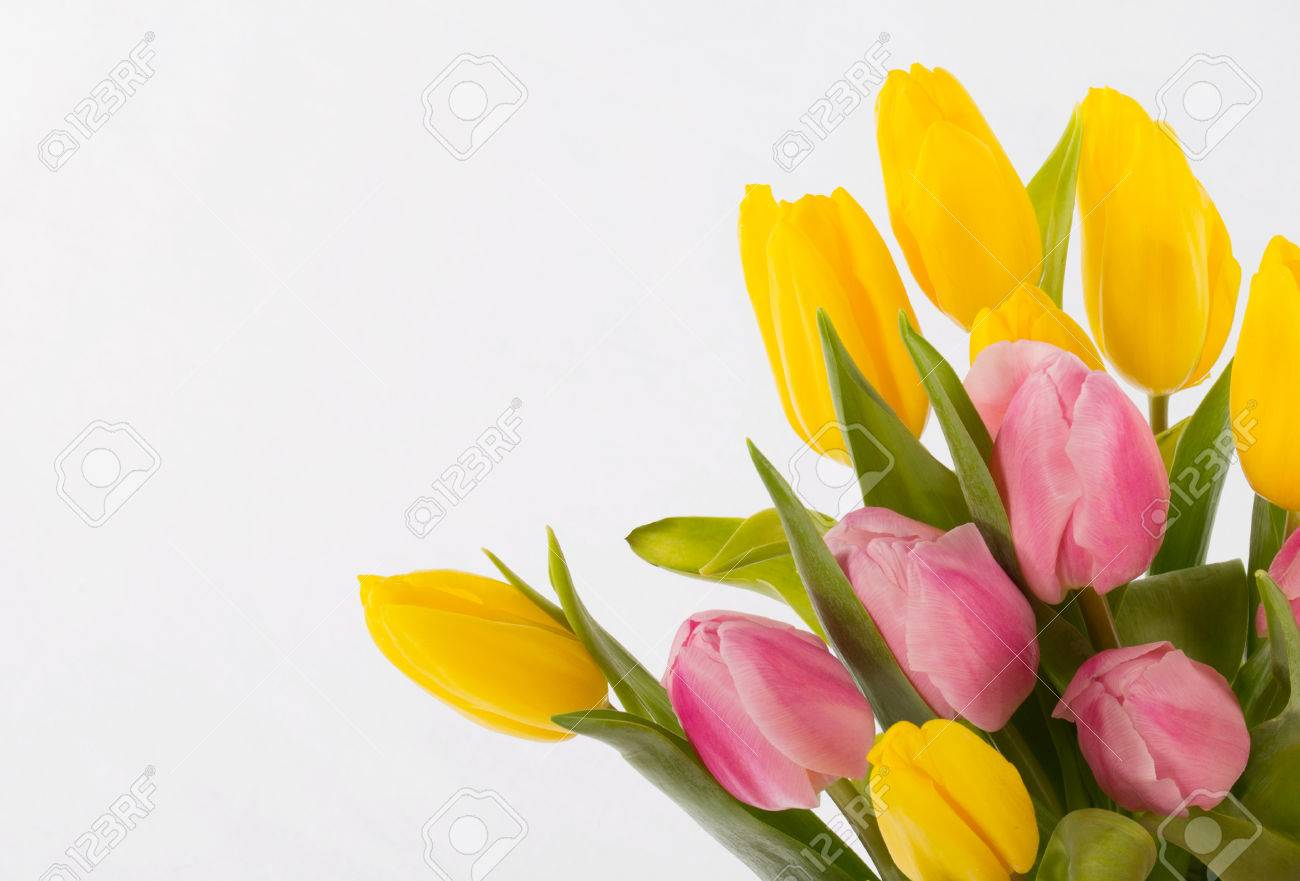 Bouquet Of Beautiful Flowers On A White Background Stock Photo