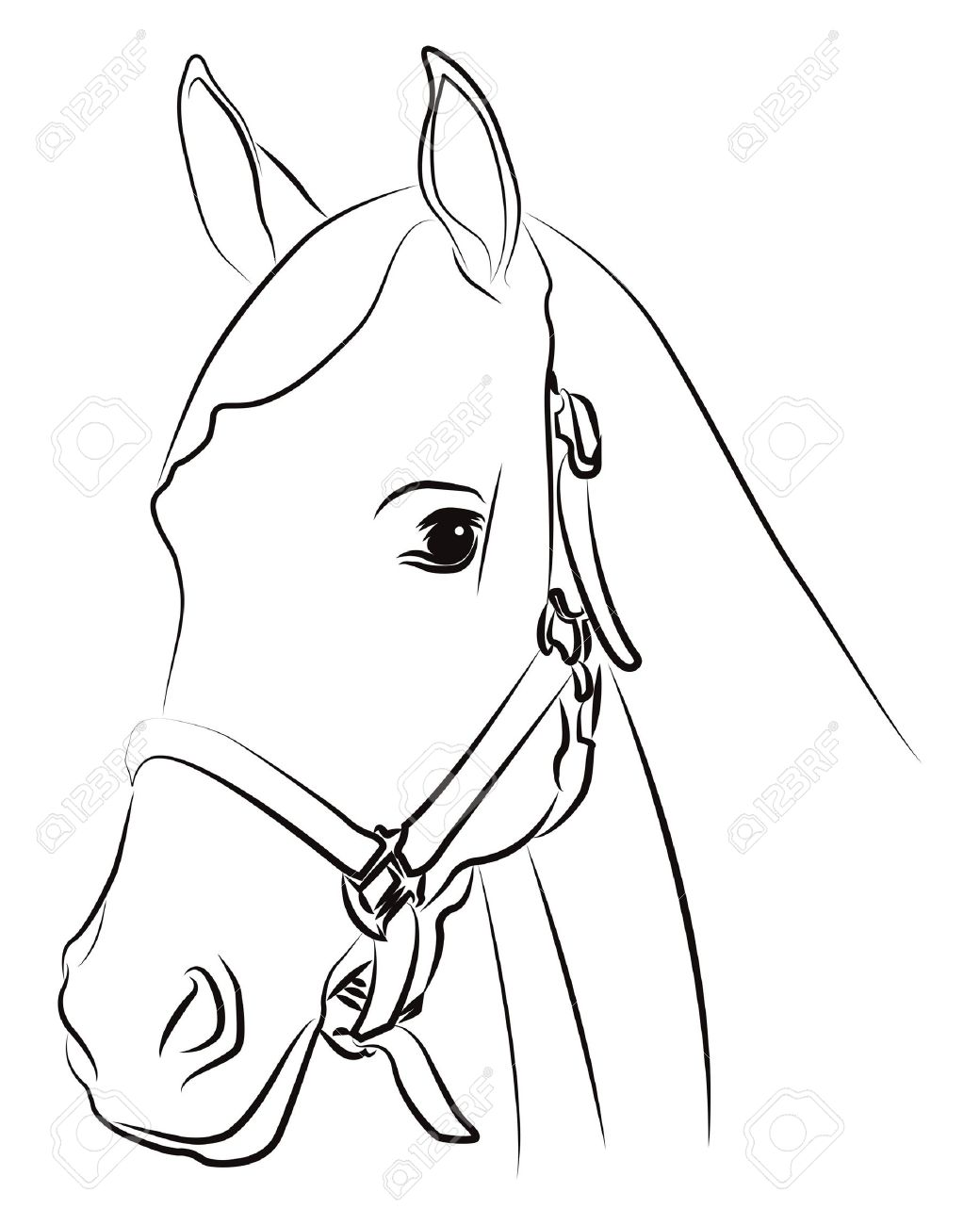 Horse head silhouette isolated on white Stock Vector - 14728859