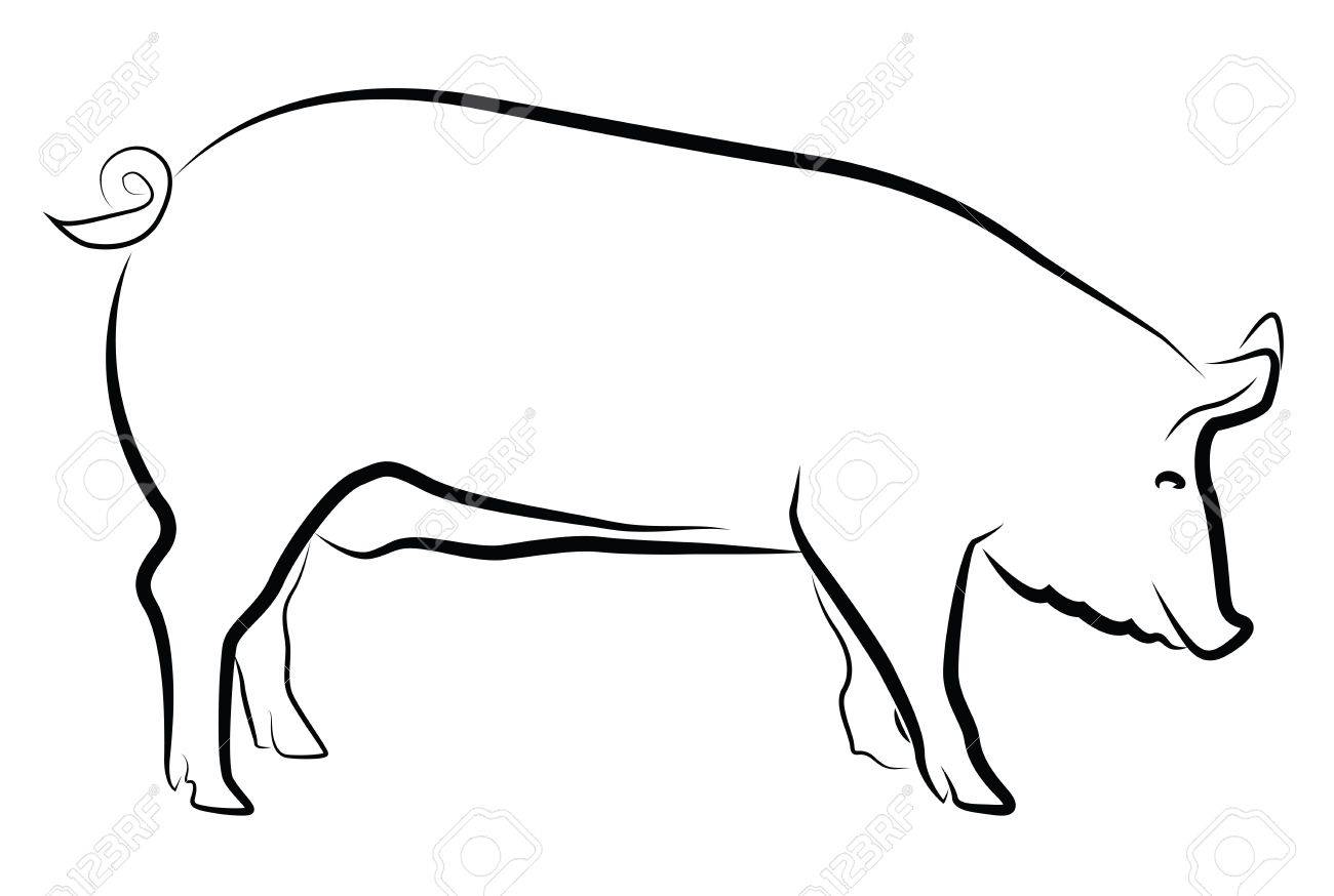 Sow silhouette isolated on white Stock Vector - 20085696