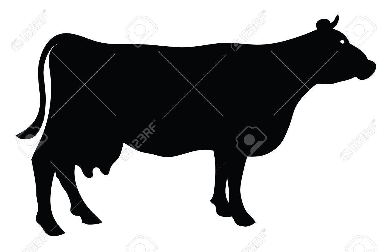 silhouette of a cow isolated on white royalty free cliparts vectors rh 123rf com cow vector silhouette beef cow silhouette vector