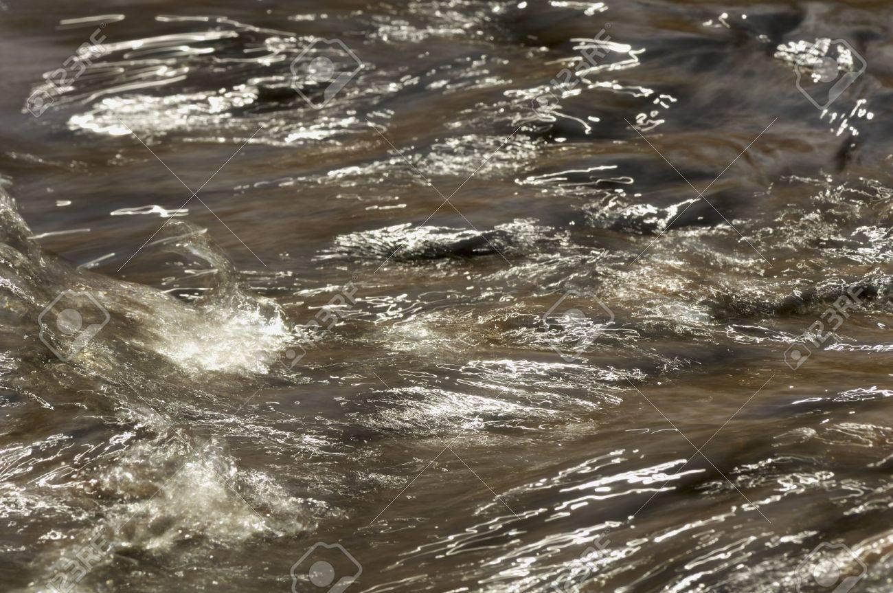 Muddy Water Stream Background Stock Photo - 10266718