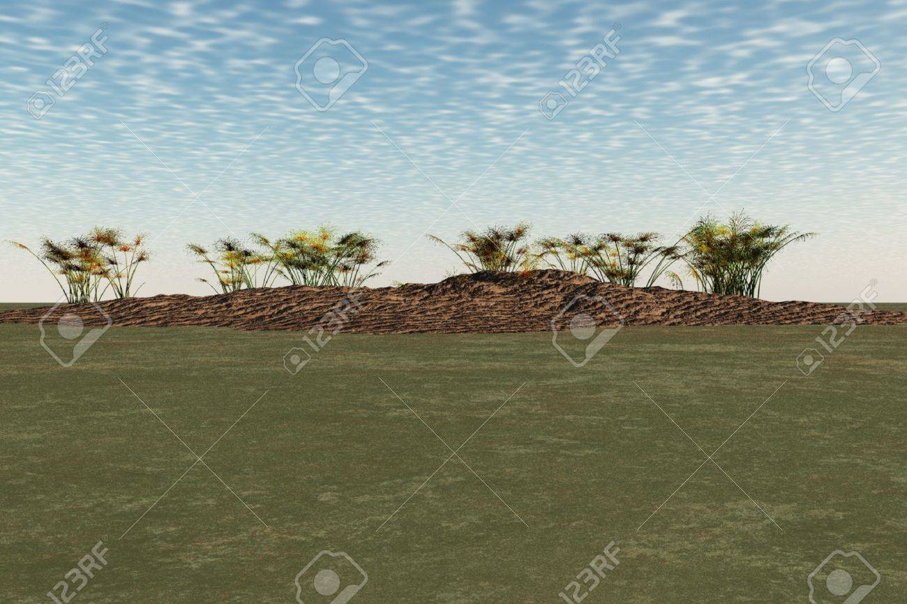 Sunny landscape scene with plants and small hill. Stock Photo - 4695995