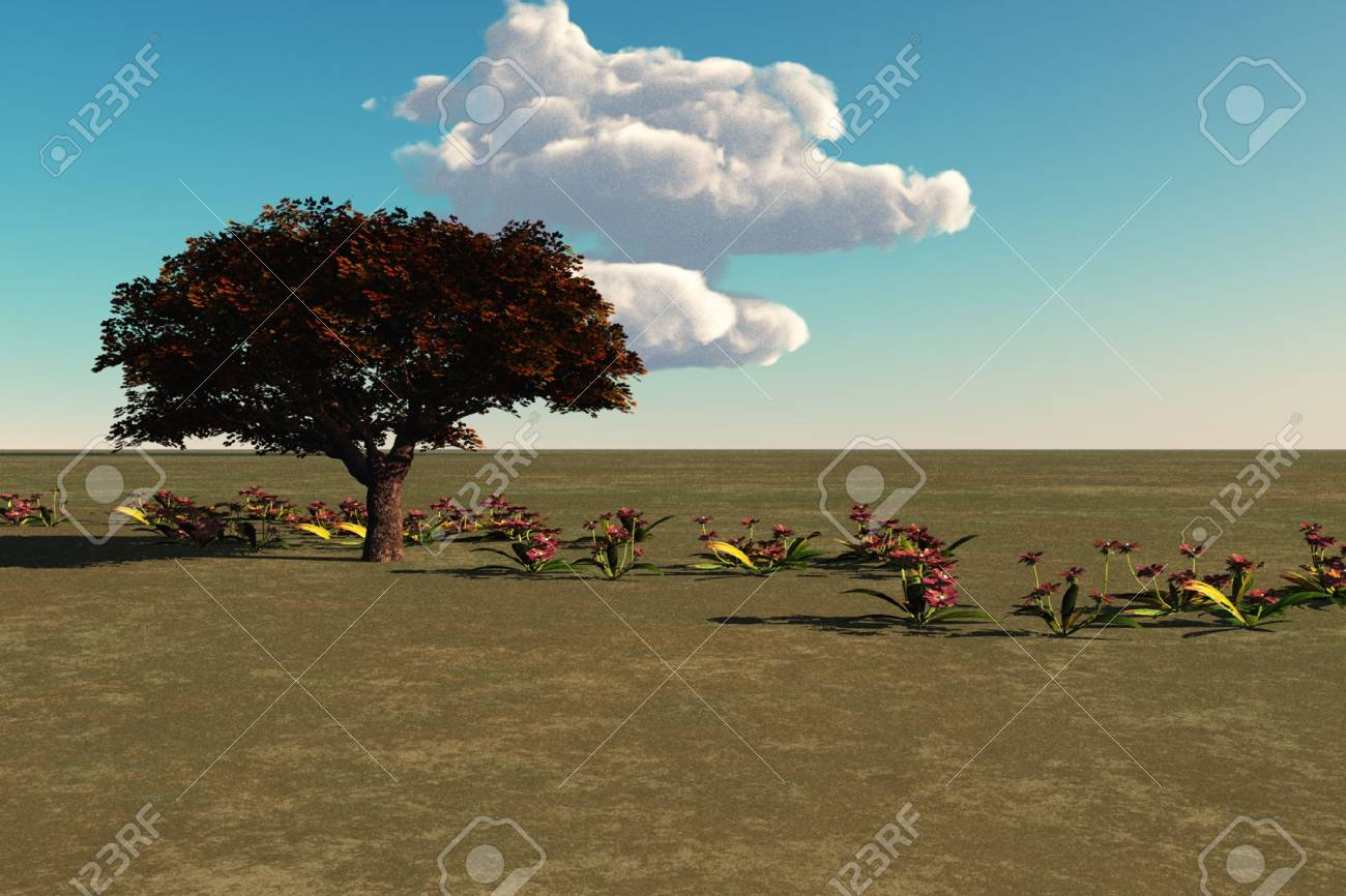 Rural meadow scene with blue sky and plants. Stock Photo - 4740162