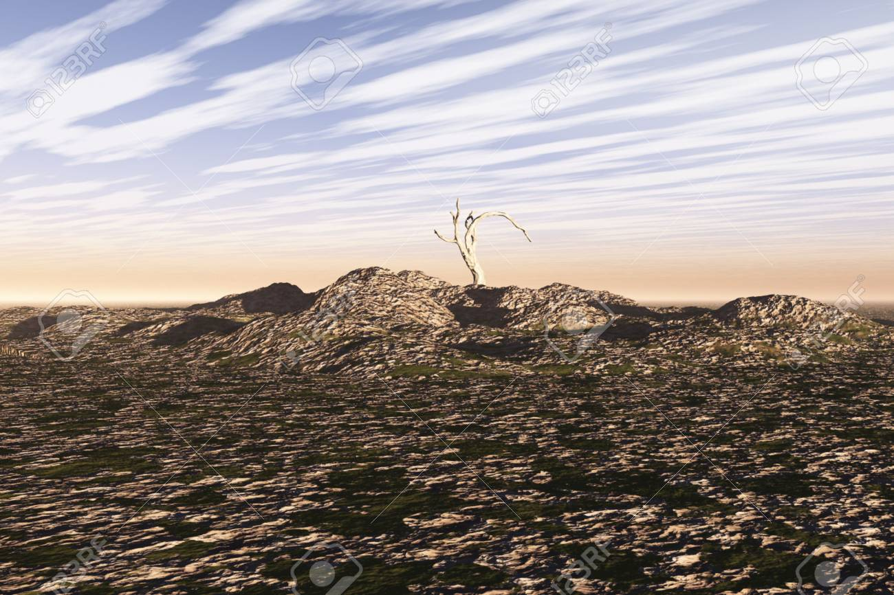 Very sparse scene at top of a pile of rock and stone. Stock Photo - 6456905
