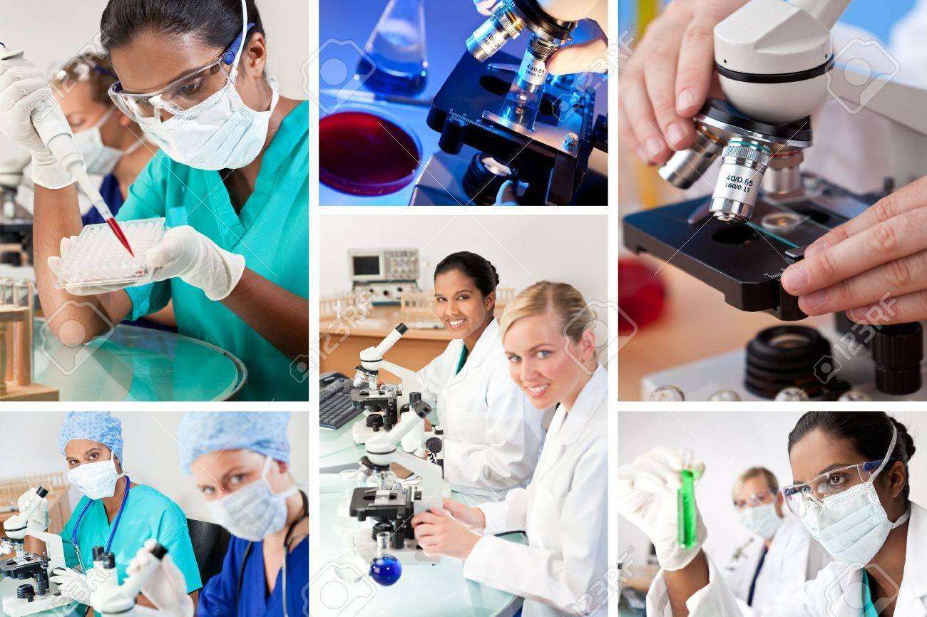 Two female medical or scientific researchers using microscopes working in a laboratory one Indian Asian one Caucasian Stock Photo - 14626066