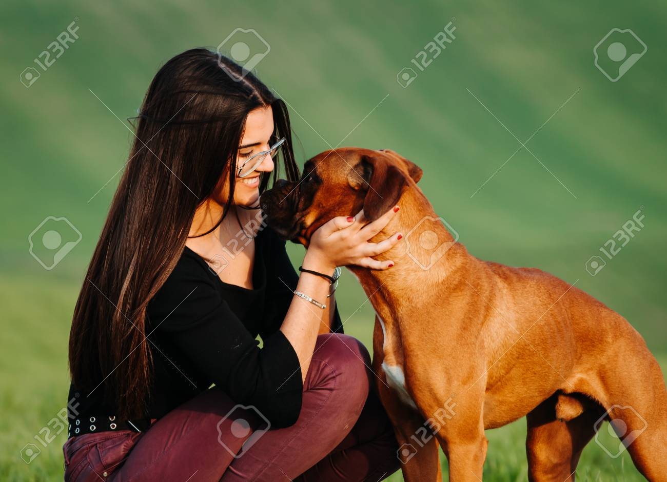 Girl Loving Her Boxer Dog In The Green Meadow Stock Photo, Picture And  Royalty Free Image. Image 121368791.
