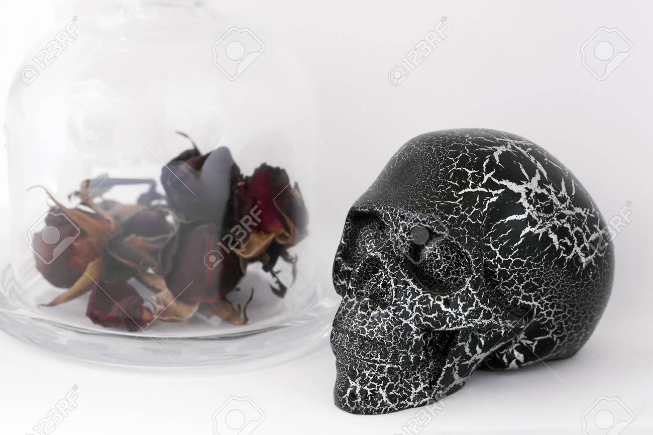 Black Human Skull And Dried Red Roses In Glass Bottle Isolated Stock Photo Picture And Royalty Free Image Image 110185580