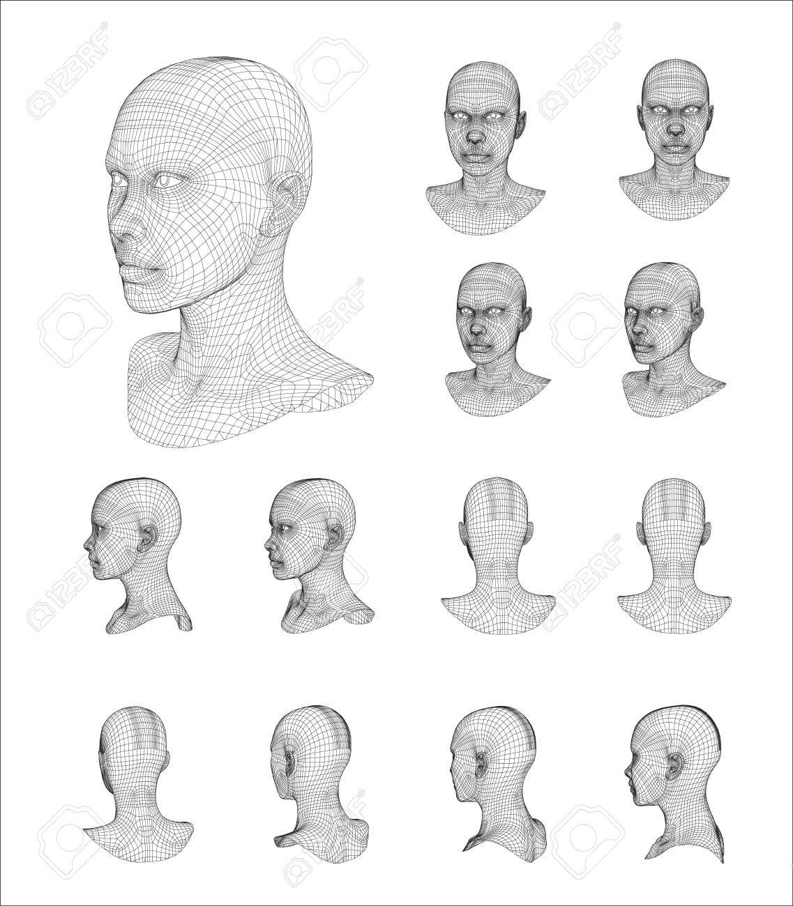 Wireframe Head 3d Model Vector Illustration Royalty Free Cliparts ...