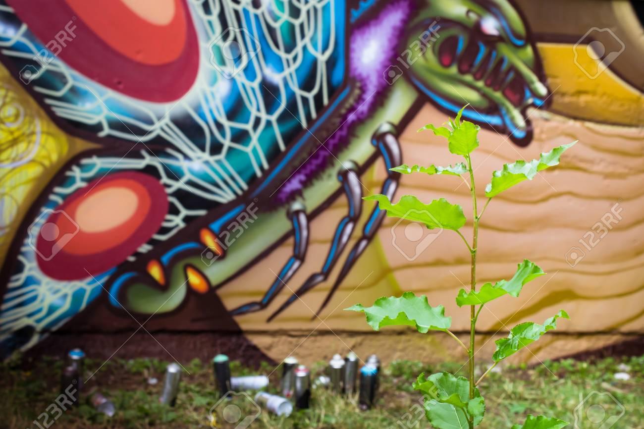 Graffiti on a wall. - 88297754