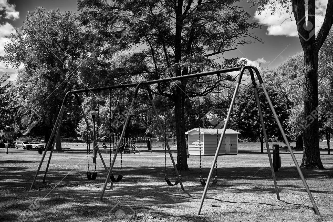 Paisaje Blanco Y Negro Del Oscilación En Un Fondo Del Bosque Fotos