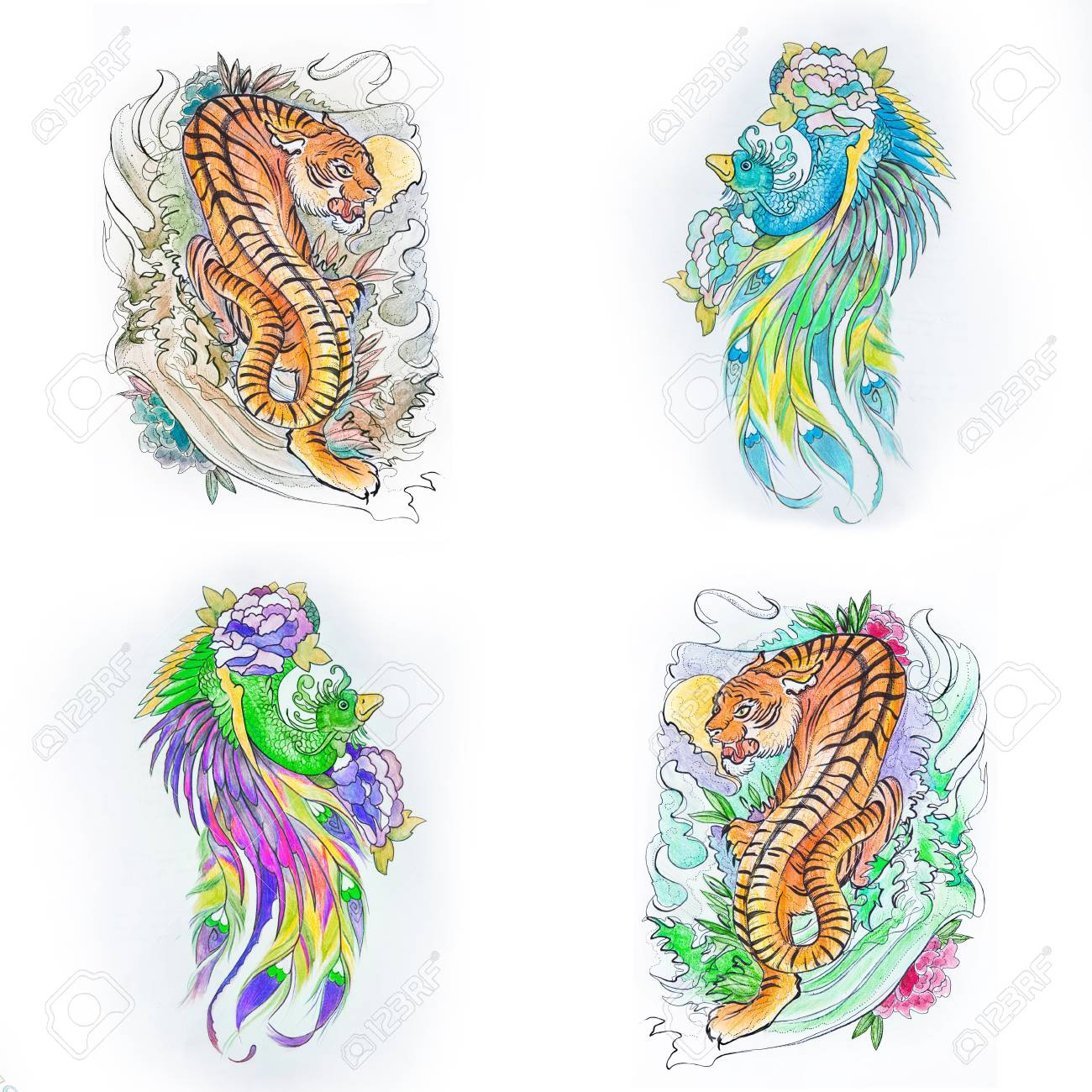 Set of sketches of a multicolored tiger and peacock on a white background stock photo