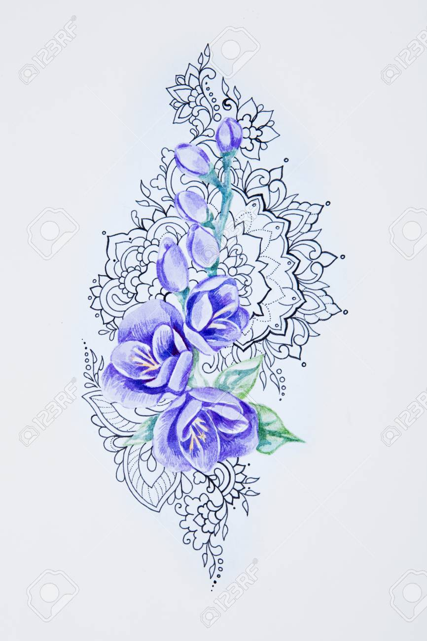 45c336c0d A sketch of a beautiful violet freesia in patterns on a white background.  Stock Photo