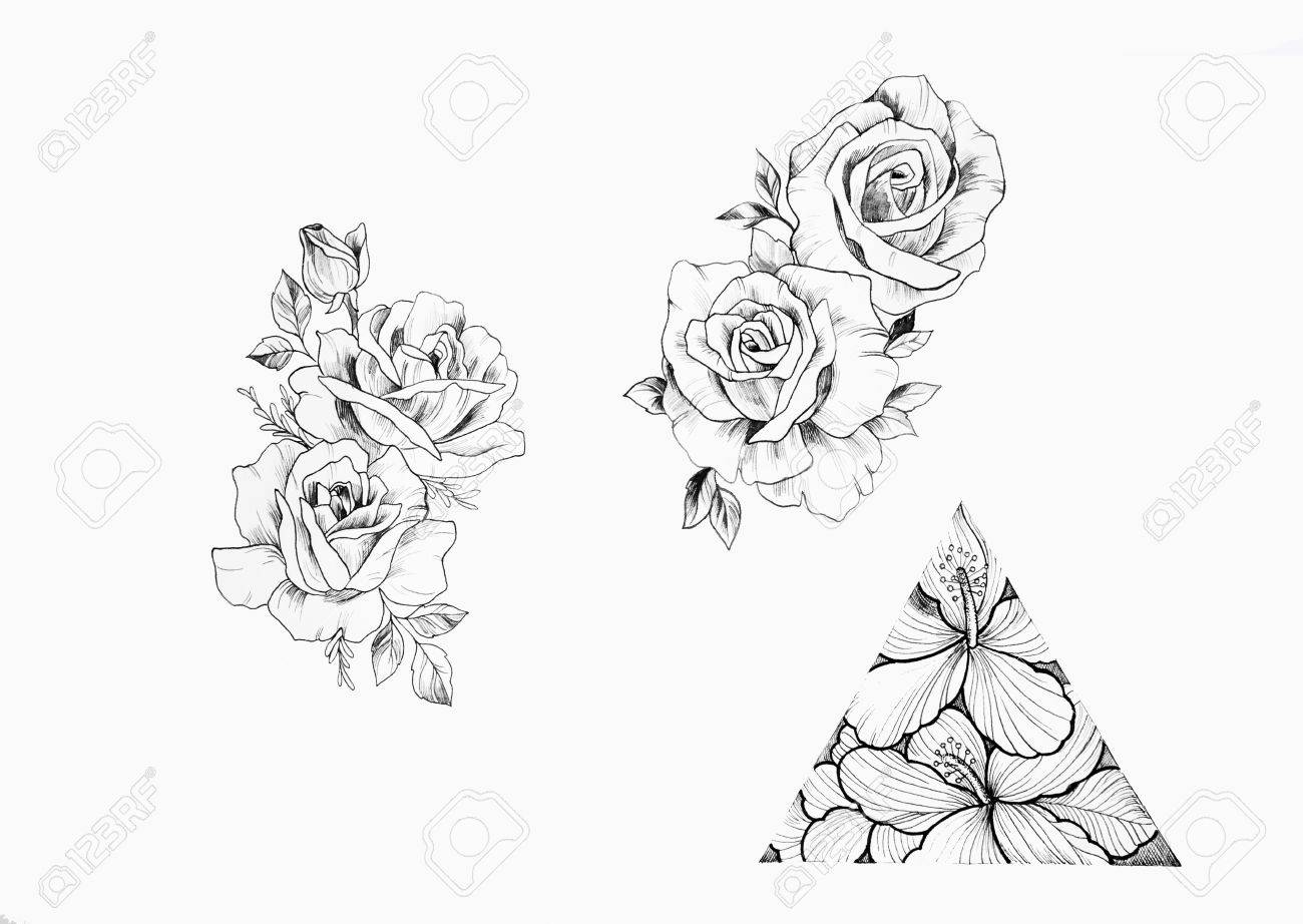 Sketch Of Branch Beautiful Roses And Triangle With Flowers On
