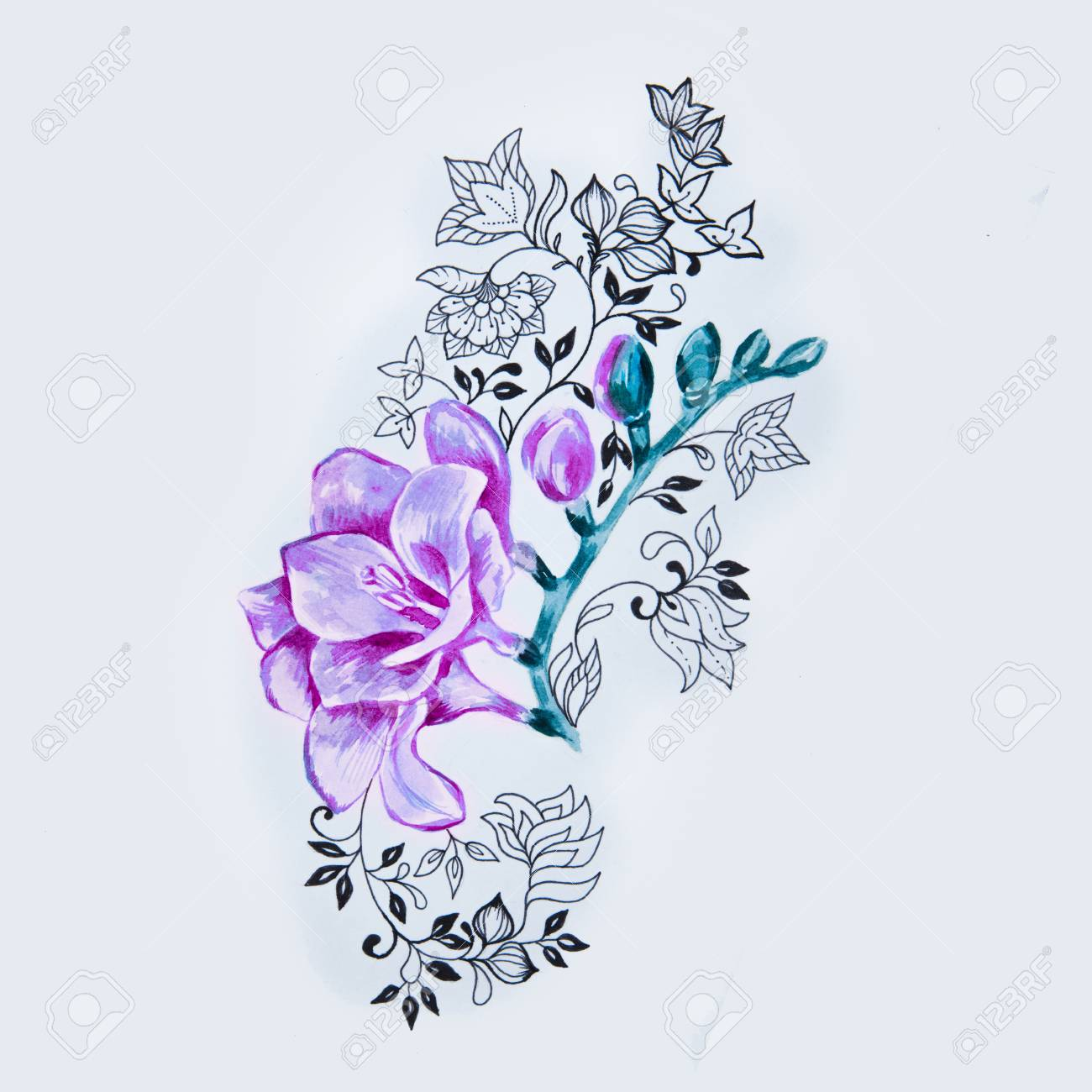 ab4fc7fca Sketch of beautiful purple freesia flower in a pattern on a white background.  Stock Photo