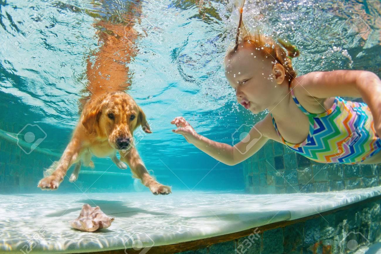Smiley Kind Mit Spaß Spielen, Training Golden Retriever Welpen Im  Schwimmbad   Springen Und Tauchen. Aktive Wasserspiele Mit Haustiere,  Populäre Hunderasse ...