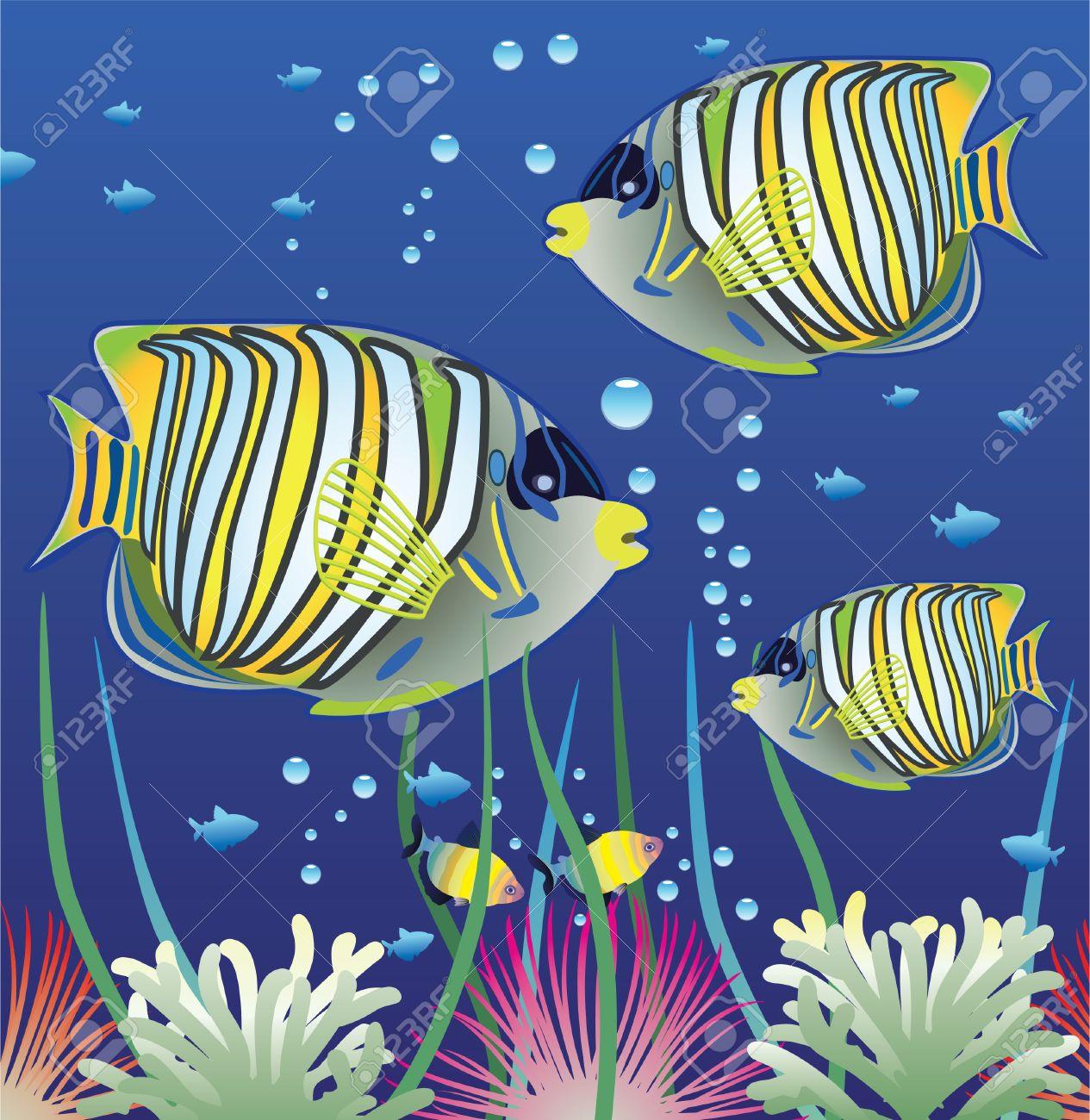 aquarium and colorful fishes Stock Vector - 7614658