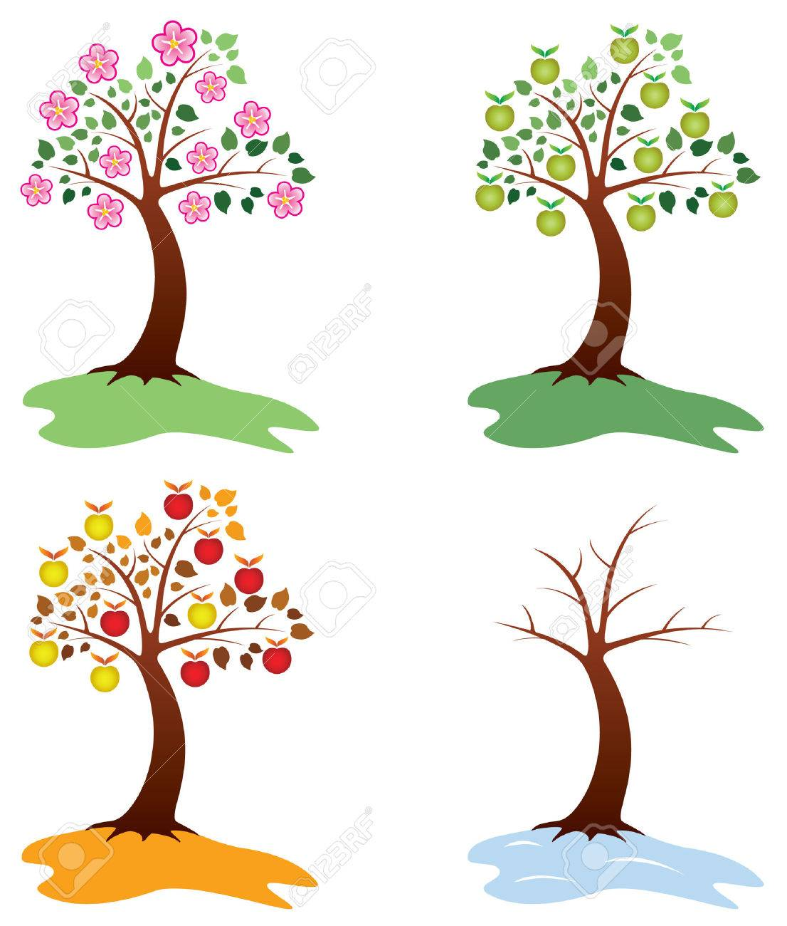 set of apple trees Stock Vector - 7908700
