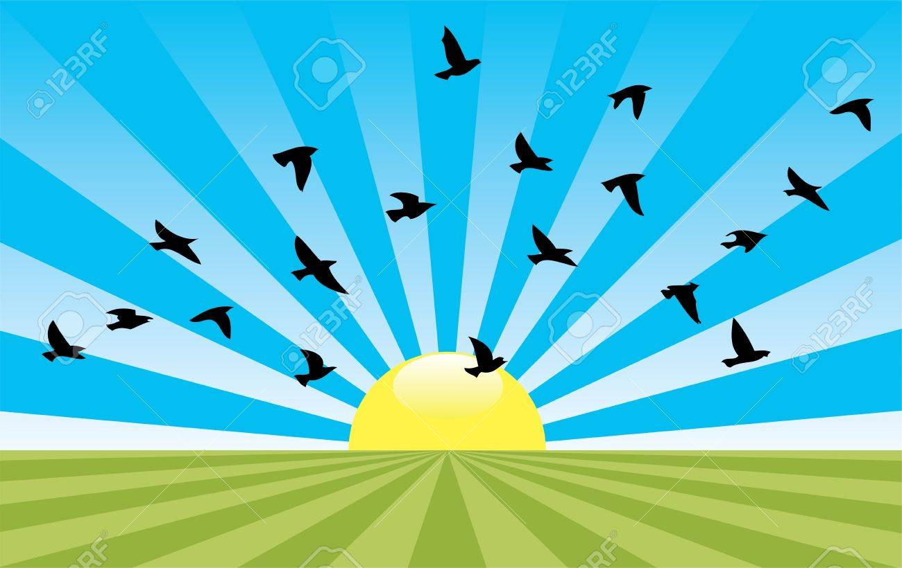 vector abstract rural landscape with rising sun and flying birds Stock Vector - 11838271