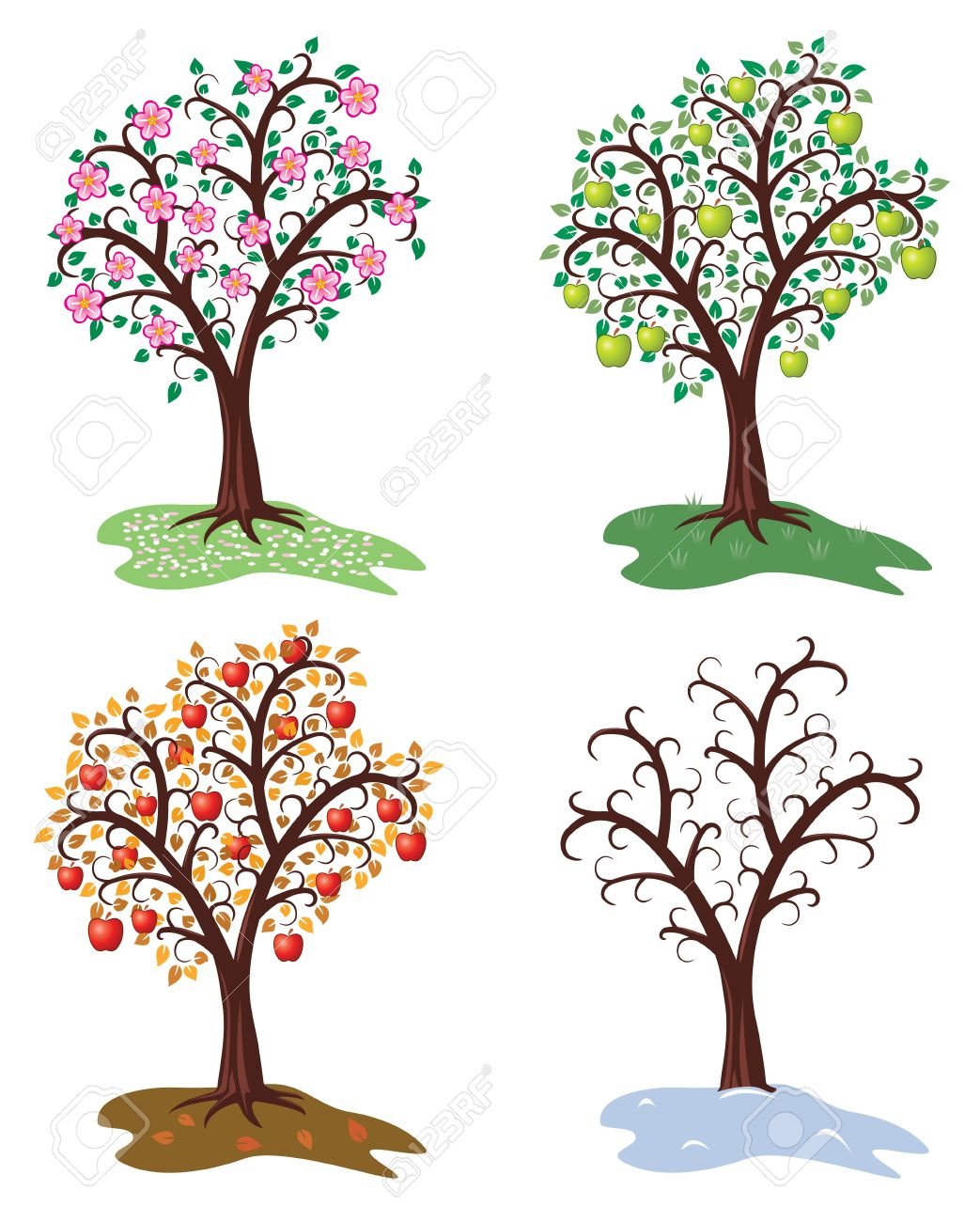 vector set of four seasons of apple tree Stock Vector - 12155592