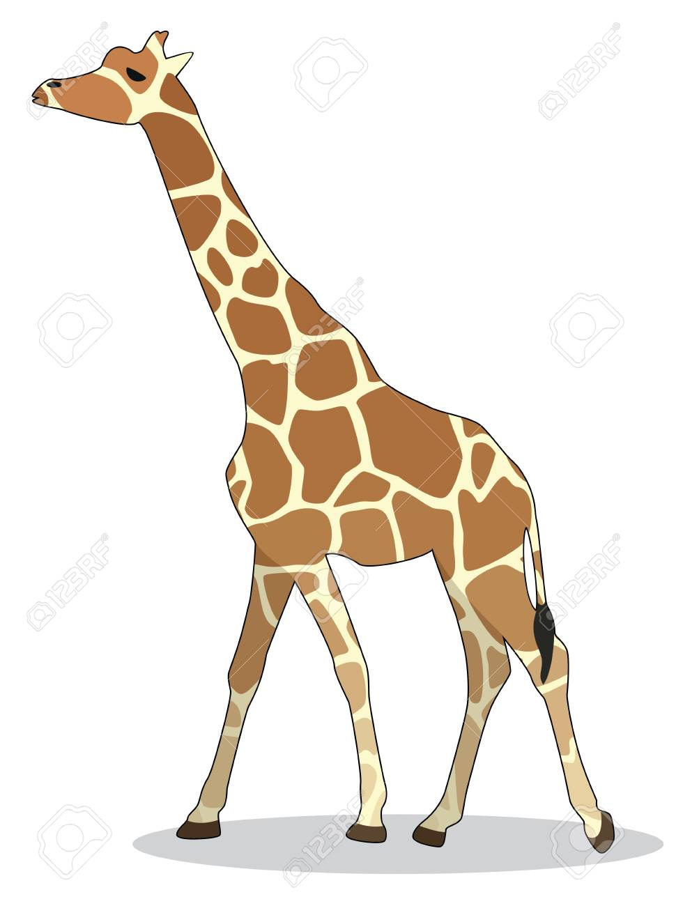 giraffe Stock Vector - 17100782