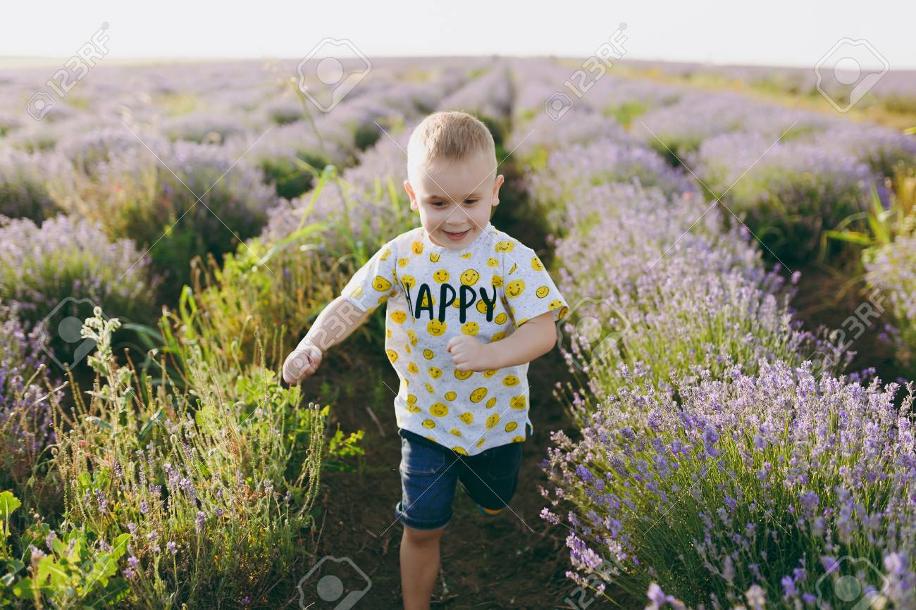 ac3d9a26e Playful little cute child baby boy walk on purple lavender flower meadow  field background, run