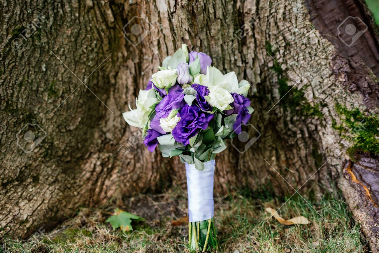 Wedding bouquet of white and purple flowers under the tree stock stock photo wedding bouquet of white and purple flowers under the tree mightylinksfo