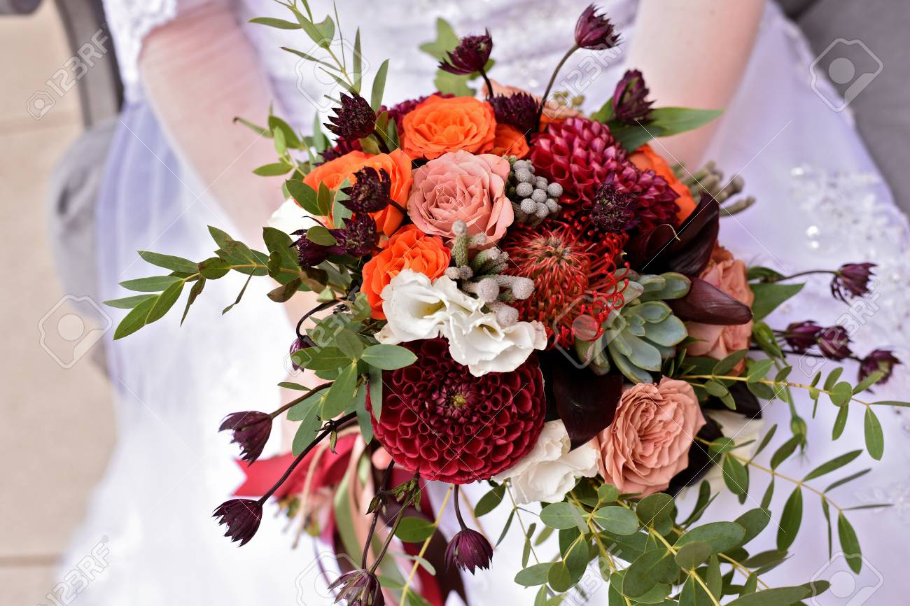 Bride Holding In Hands Bright Wedding Bouquet With Claret Dahlias Stock Photo Picture And Royalty Free Image Image 102672759