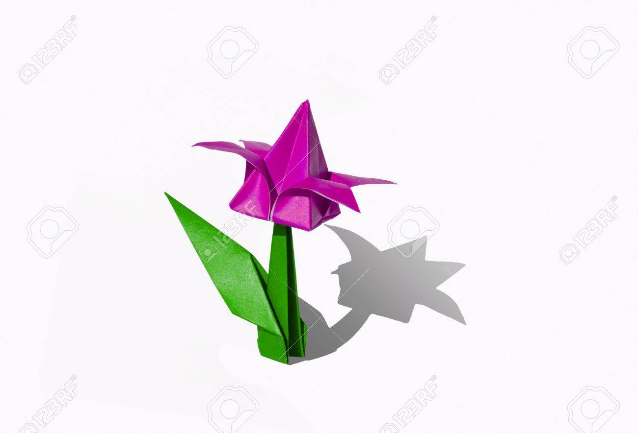 Origami Tulip Flower The Tulip Is Isolated On White Background