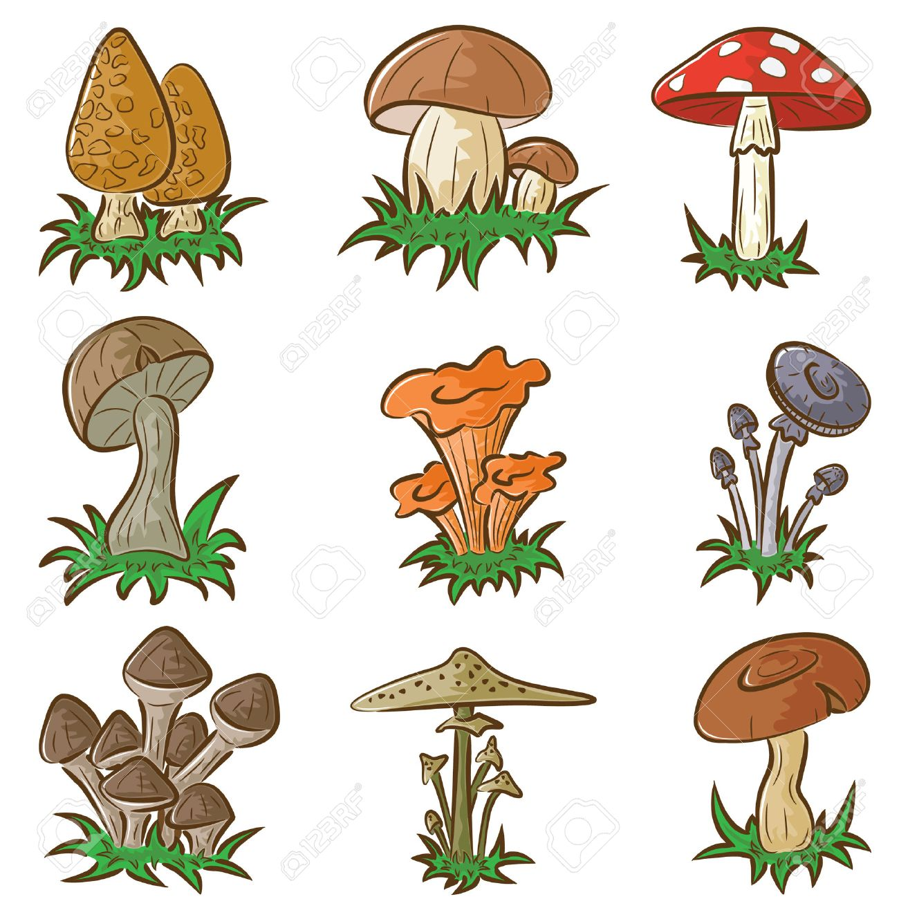 Color Set Of Different Cute Mushrooms Royalty Free Cliparts
