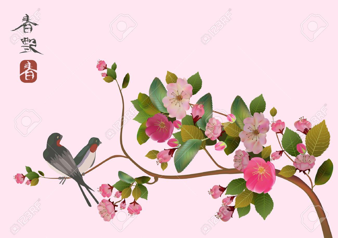 sakura bird  postcard   menu Stock Vector - 13932916
