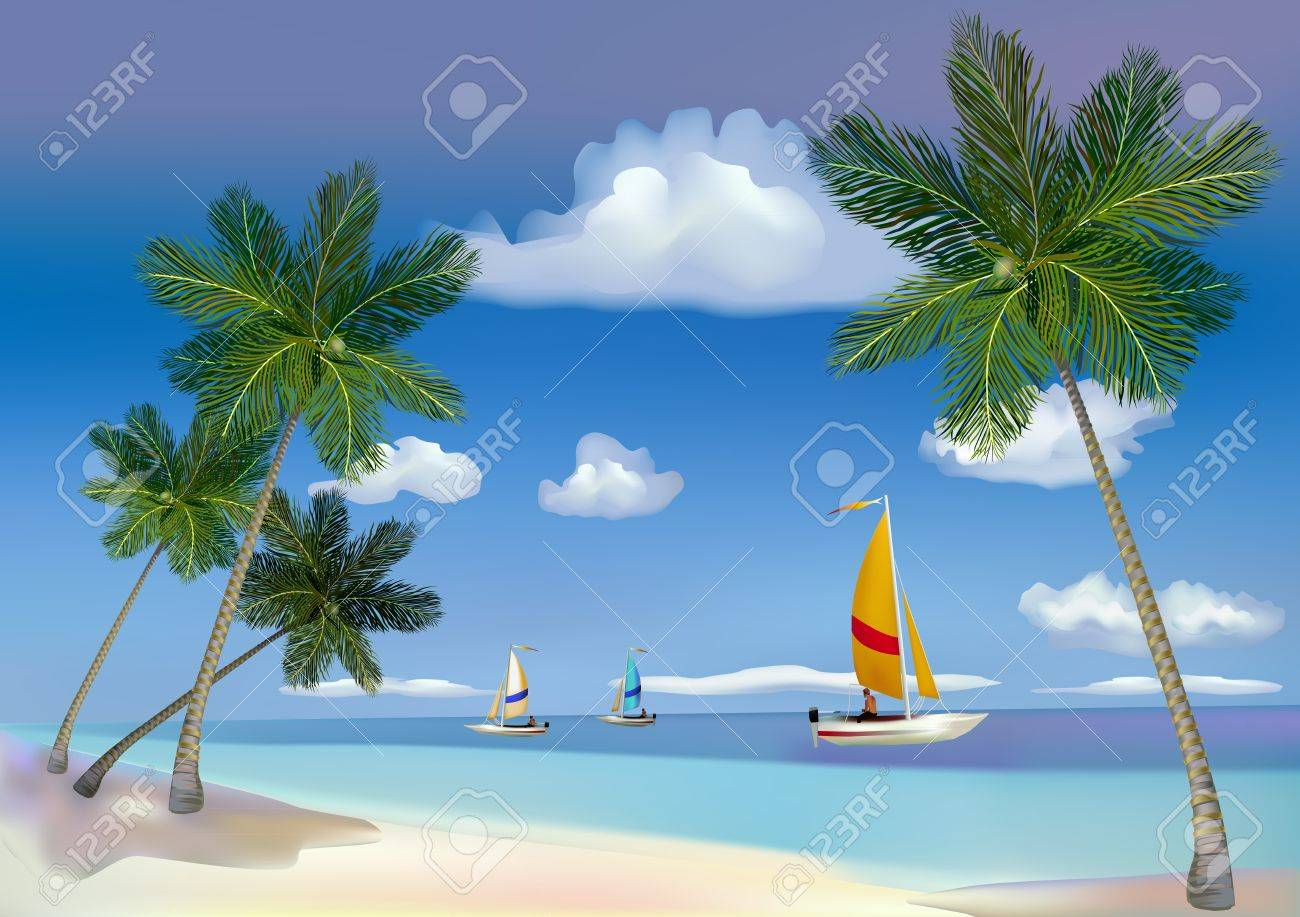 The sea, yachts, palm trees Stock Vector - 14171893