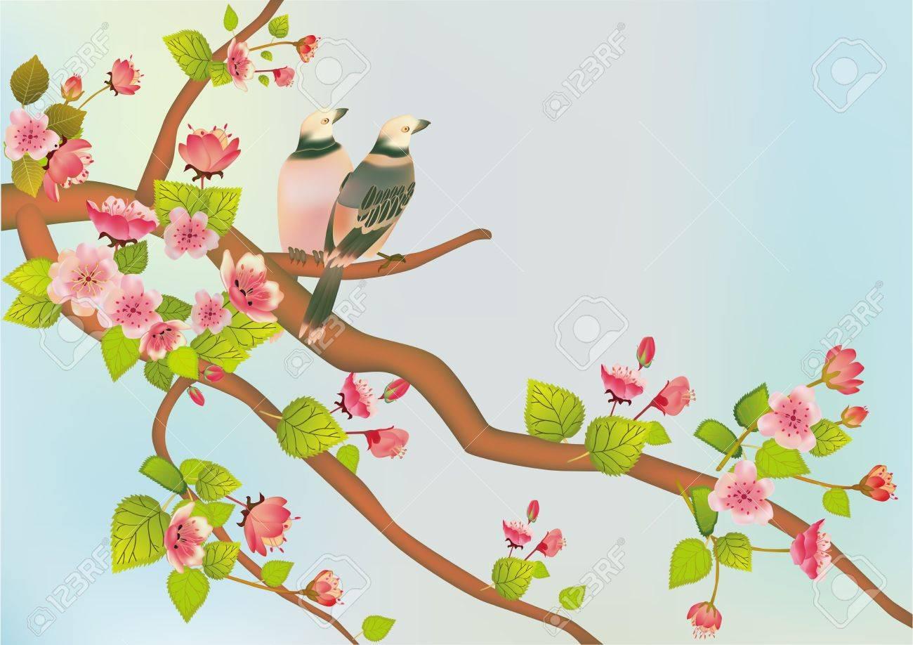 sakura   postcard   menu Stock Vector - 15249643