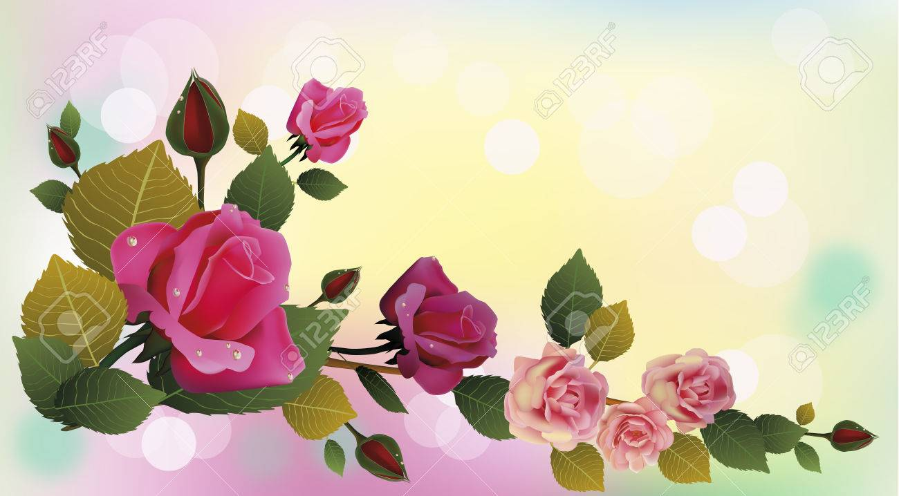 Rose the most beautiful flowers in the world postcard royalty free rose the most beautiful flowers in the world postcard stock vector 24549429 izmirmasajfo Image collections