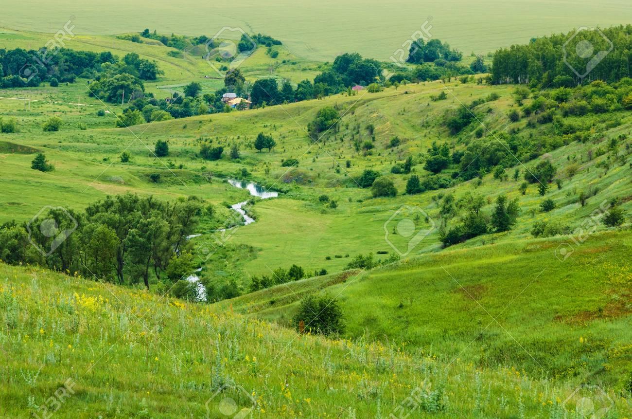 Dale Landscape