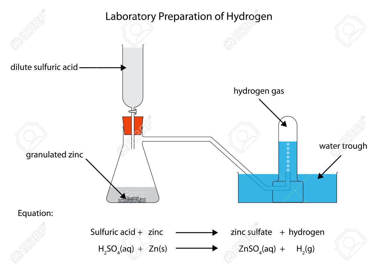 Labelled diagram for laboratory preparation of hydrogen from labelled diagram for laboratory preparation of hydrogen from zinc and sulfuric acid stock vector 51446929 ccuart Images