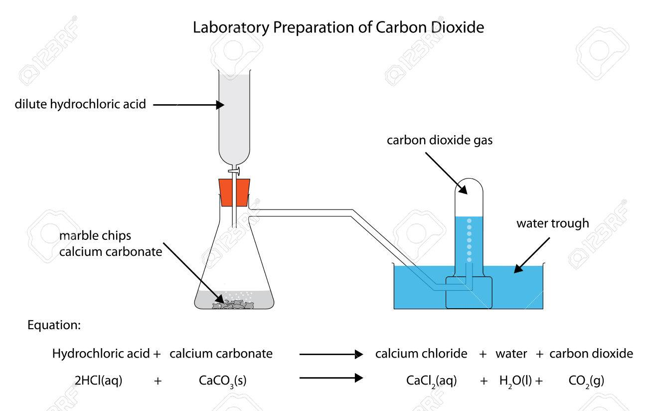 Diagram of the laboratory preparation of carbon dioxide royalty diagram of the laboratory preparation of carbon dioxide stock vector 66458815 gamestrikefo Images