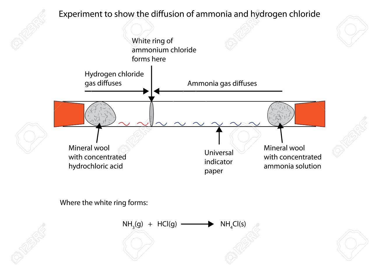 Labelled diagram to show the diffusion of ammonia and hydrogen labelled diagram to show the diffusion of ammonia and hydrogen chloride stock vector 66837635 ccuart Images
