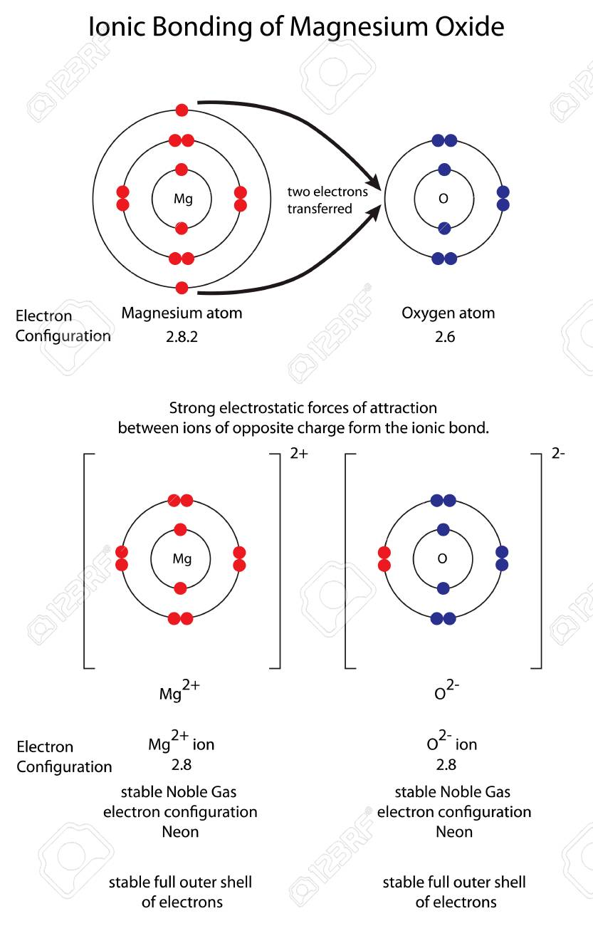 Diagram to show ionic bonding in magnesium oxide royalty free diagram to show ionic bonding in magnesium oxide stock vector 102095992 ccuart Choice Image