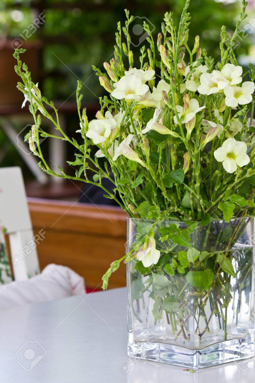 Hawaiian Flowers Bouquet In Glass Vase Stock Photo, Picture And ...