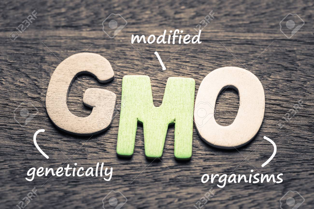 Wood letters of GMO and definition on wood background