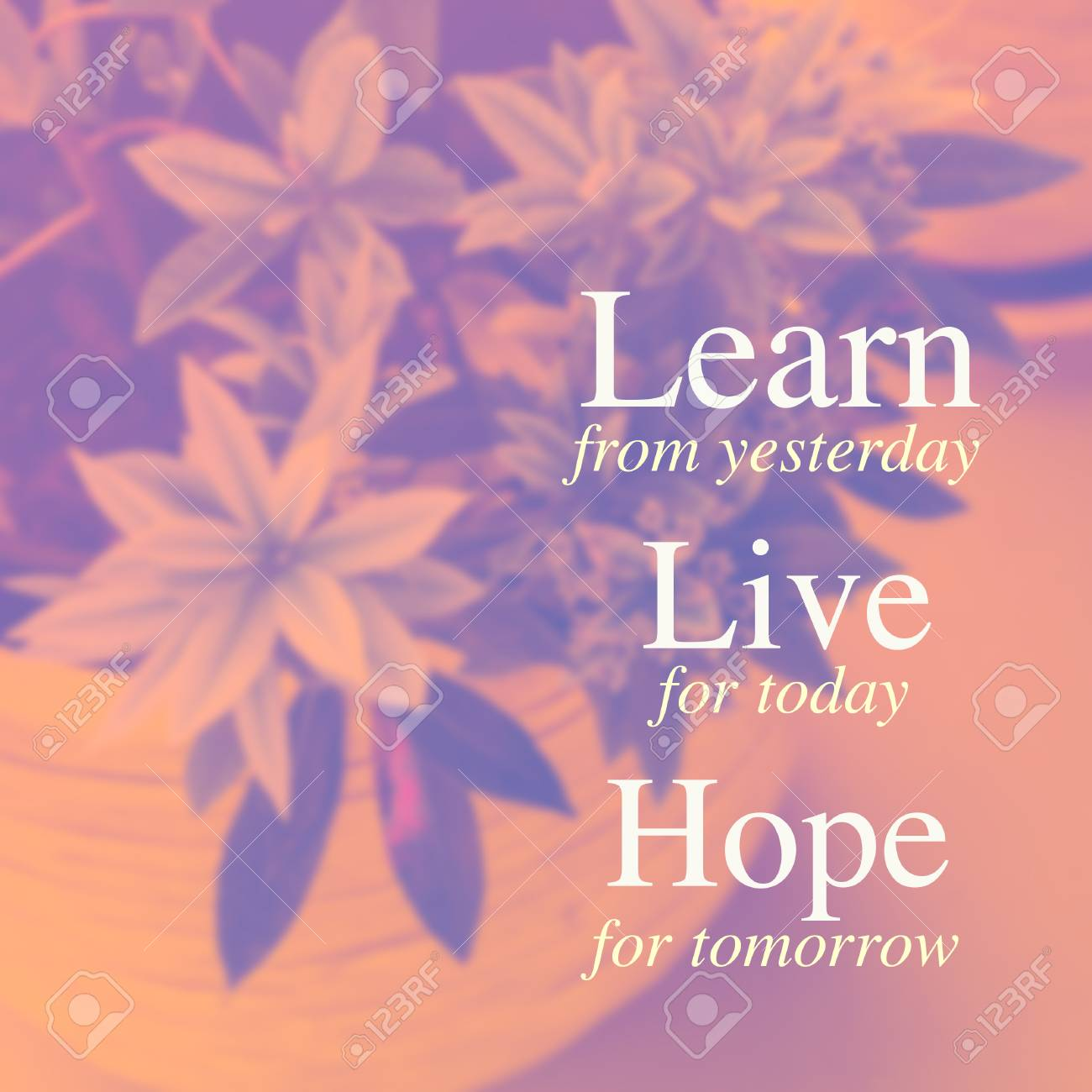 Live For Today Quotes Inspiration Quote Learn From Yesterday Live For Today Hope For