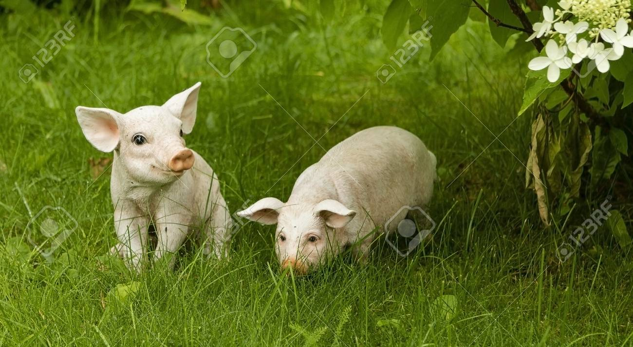 Garden figurines of pigs on a background of green grass. - 107241315
