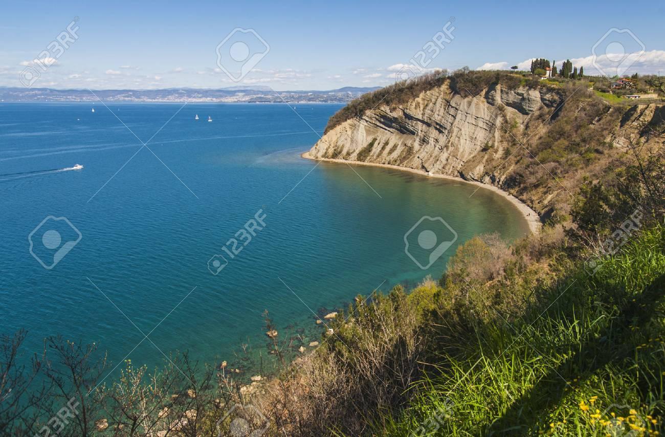 Strunjan cliff, Slovenia - 35045903