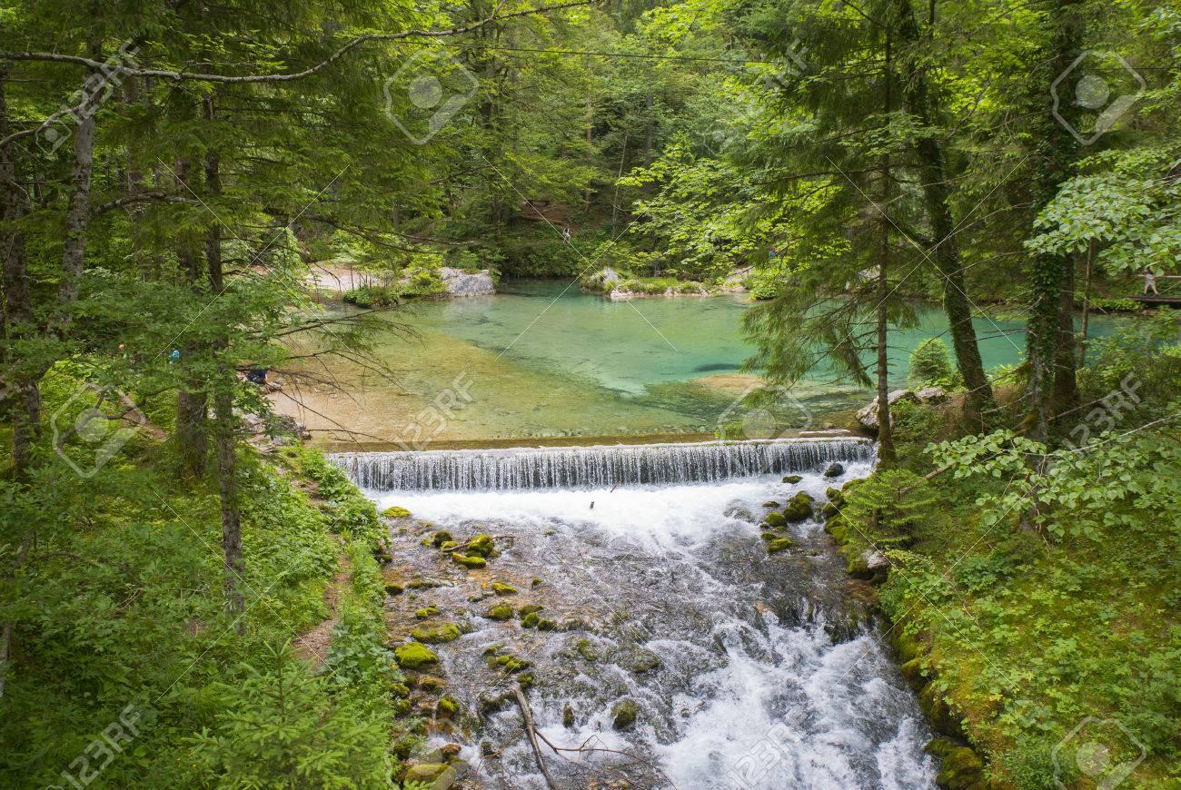 Kamniska Bistrica valley, Slovenia - 51354391