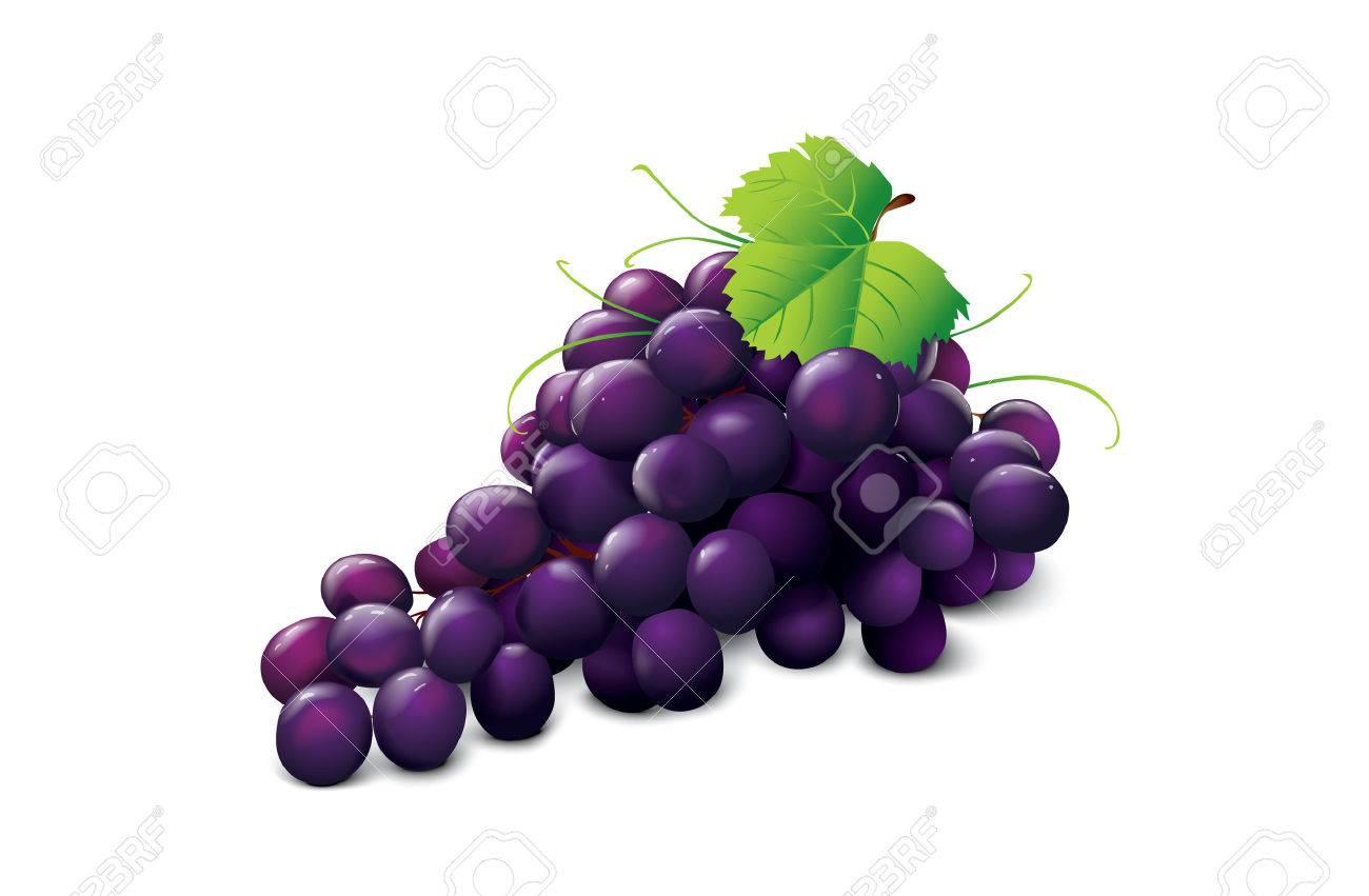 ripe grape - 5637695