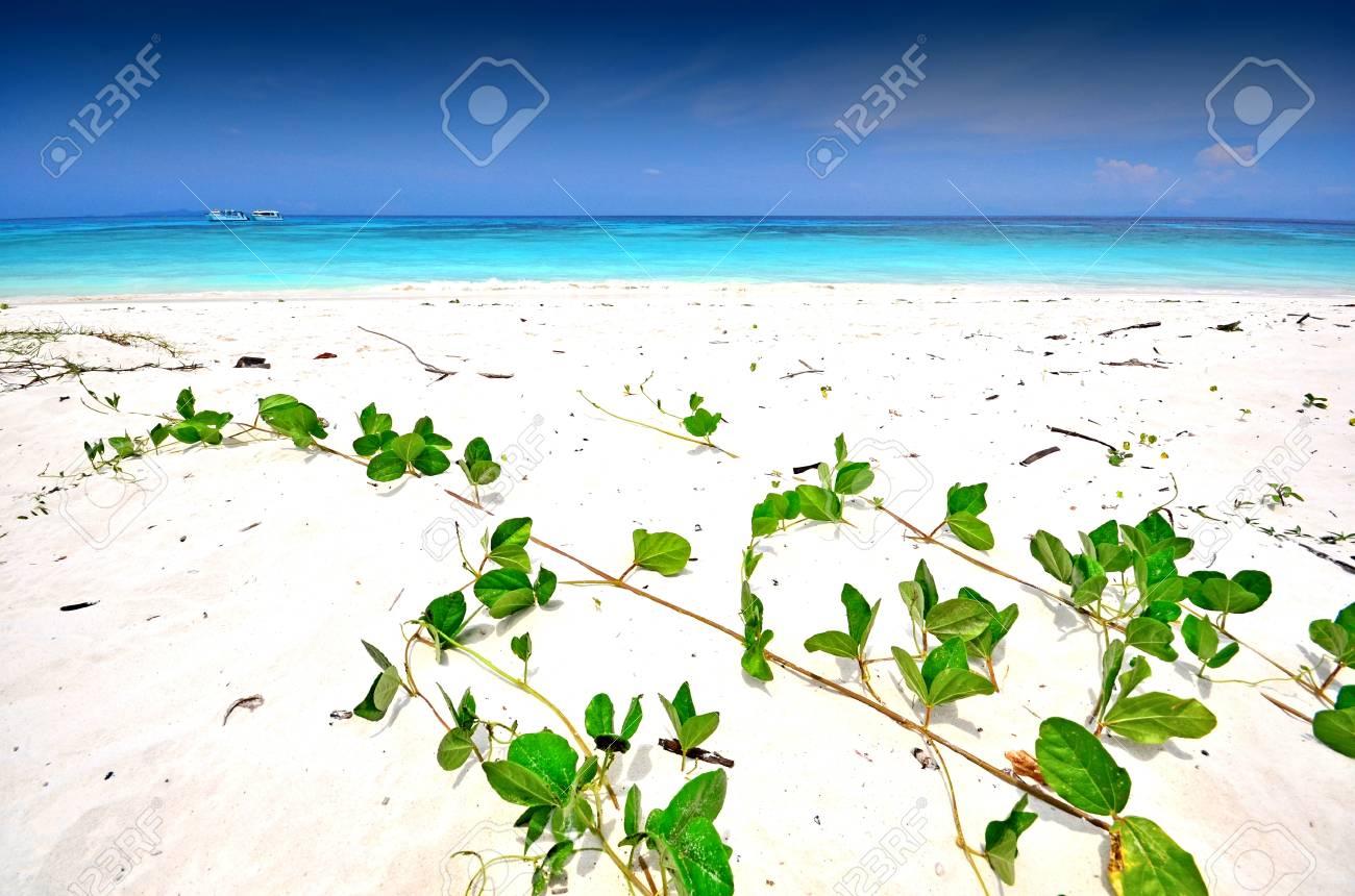 Mer Thailande Carte.Mer Sable Soleil Plage Bleu Ciel Thailande Paysage Point De Vue Fond Parc En Plein Air Pour La Carte Postale Pour La Conception Civile