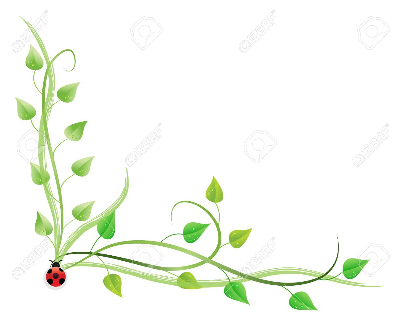 Vector Illustration Of Pothos On Vines Isolated Royalty Free Cliparts Vectors And Stock Illustration Image 4244436