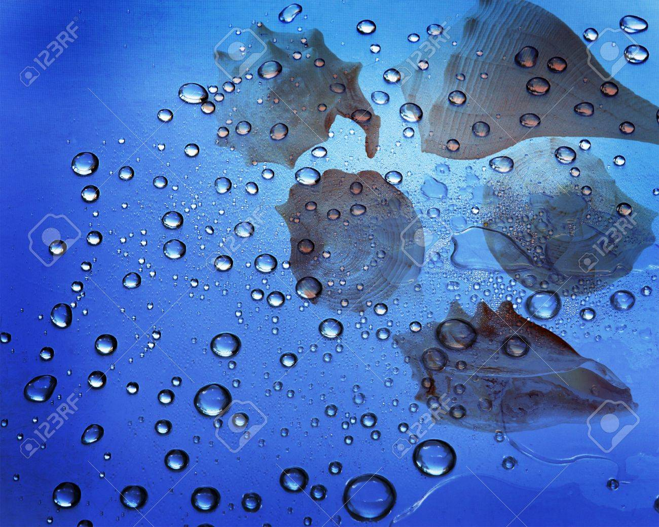 Seashell under water with bubbles all over Stock Photo - 4268335